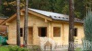 Будівництво дерев'яних будинків Дач